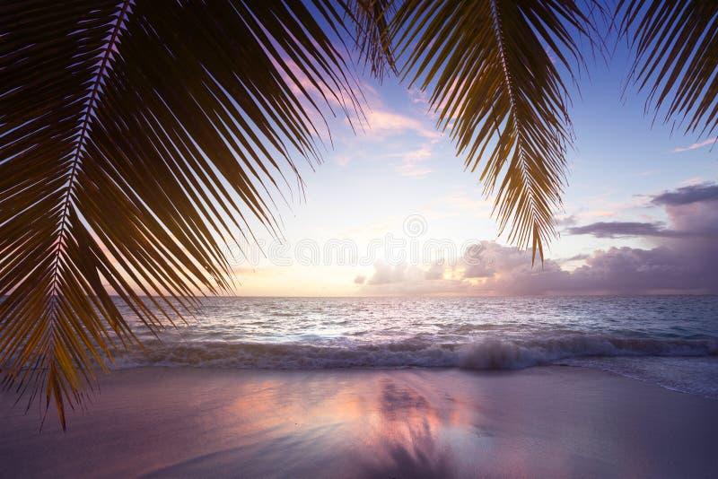 在塞舌尔群岛海滩的日落 图库摄影
