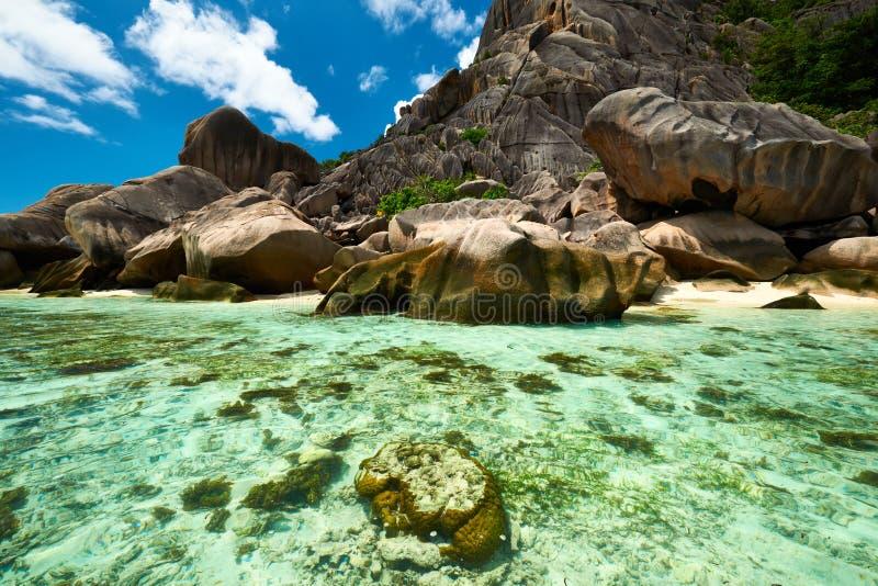 在塞舌尔群岛的美丽的海滩 库存图片