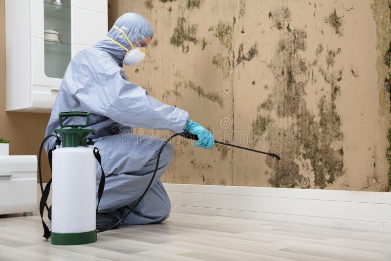 在墙壁上的害虫控制工作者喷洒的杀虫剂 免版税库存照片