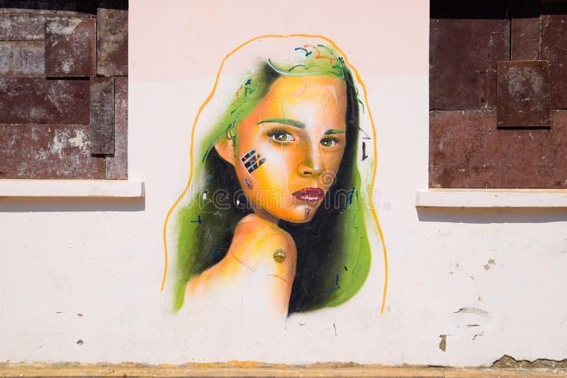 在墙壁上的街道画,一个女孩的画象有绿色头发的 免版税库存图片