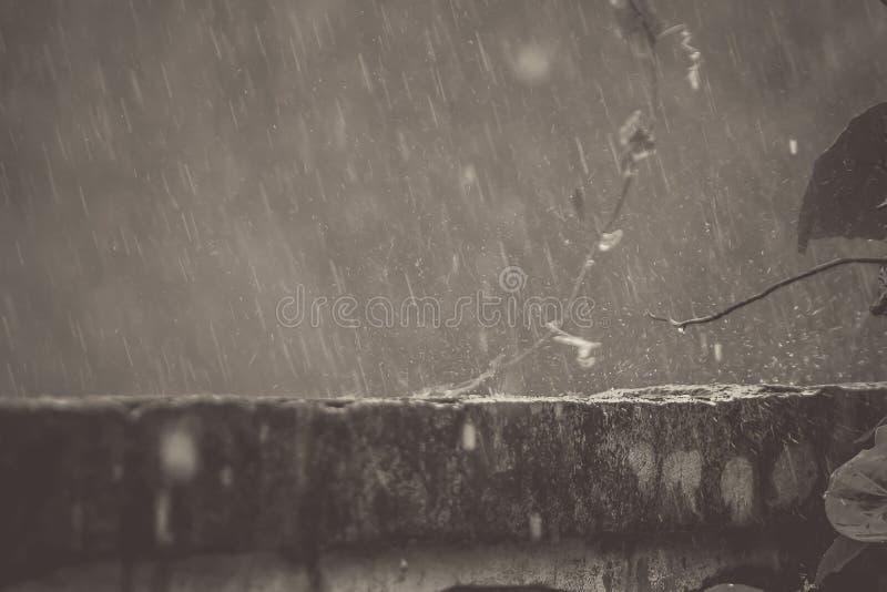 在墙壁上的雨看起来美丽,是在反弹以后 库存照片
