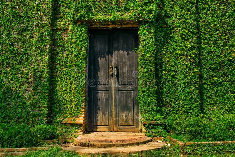 在墙壁的老木门 免版税图库摄影