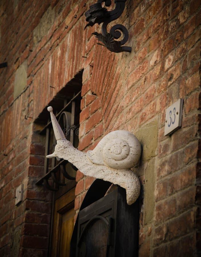 在墙壁锡耶纳上的蜗牛 库存图片