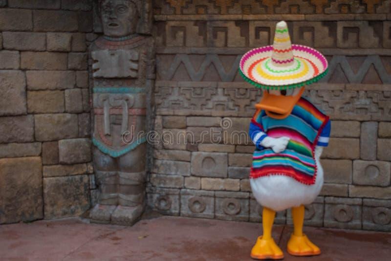 在墨西哥衣裳的唐老鸭在Epcot 1 免版税库存图片