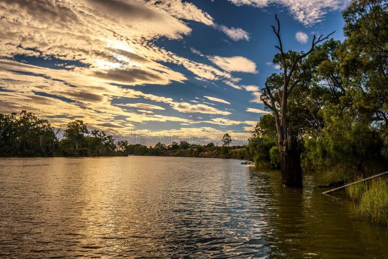 在墨累河的日落在米尔杜拉,澳大利亚 库存图片