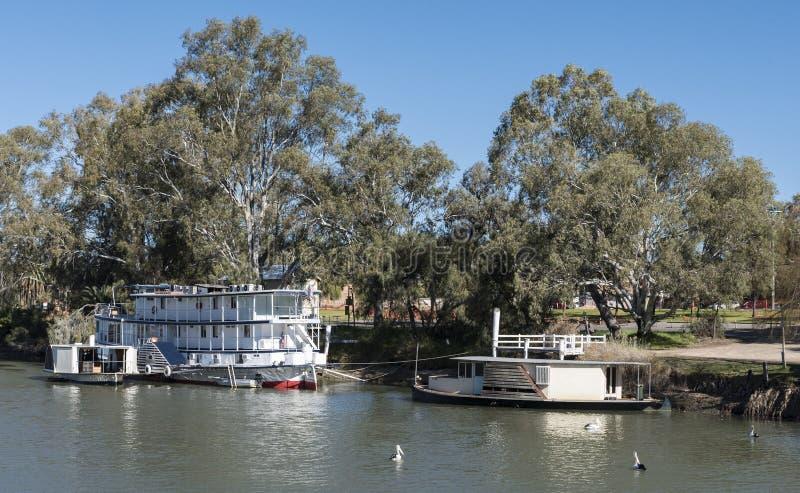在墨累河,米尔杜拉,澳大利亚的Paddleboat 免版税图库摄影