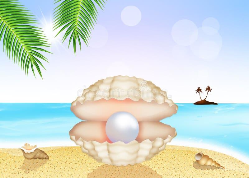 在壳的珍珠 库存例证