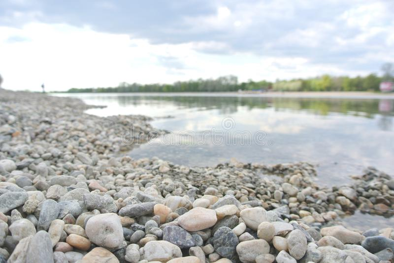 在夏天下午的有卵石花纹的湖岸 图库摄影