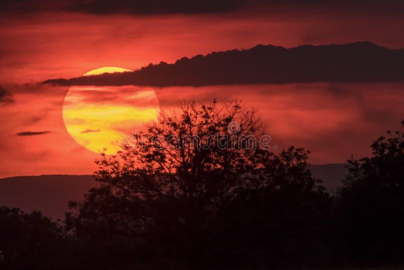 在夏天光末期的太阳 库存照片