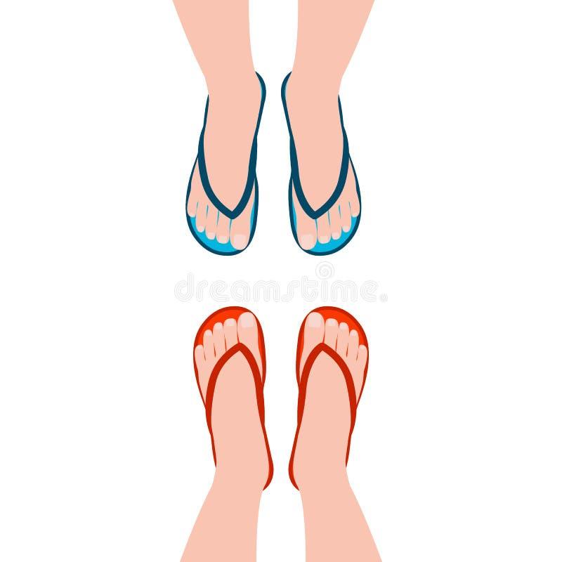 在夏天凉鞋的女性脚,flp拍击声 面对的人 鞋子,顶视图 r 库存例证