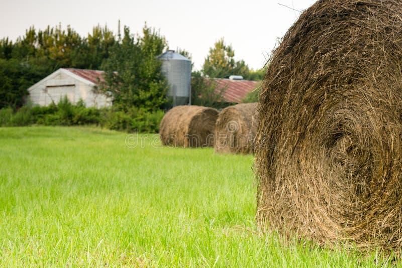在夏天期间,圆的大包在领域的干草 免版税图库摄影