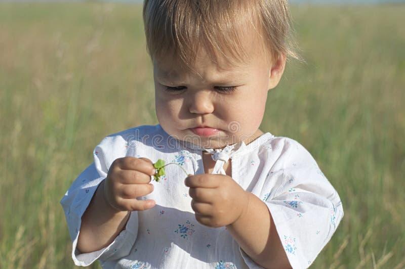 在夏天领域的小女孩画象 库存图片