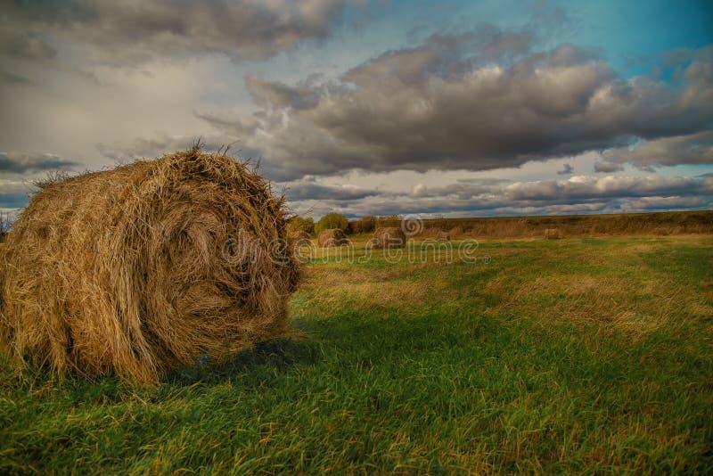 Download 在夏天领域的干草堆 库存图片. 图片 包括有 秸杆, 转弯, 痛苦, 国家(地区), 农场, 词根, 谷物 - 62528201