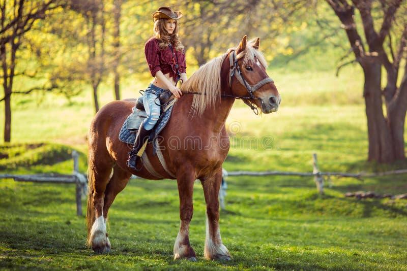 在夏天领域的美丽的女孩骑乘马 免版税库存图片