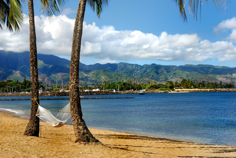 在夏威夷海滩的Hammoch 免版税图库摄影