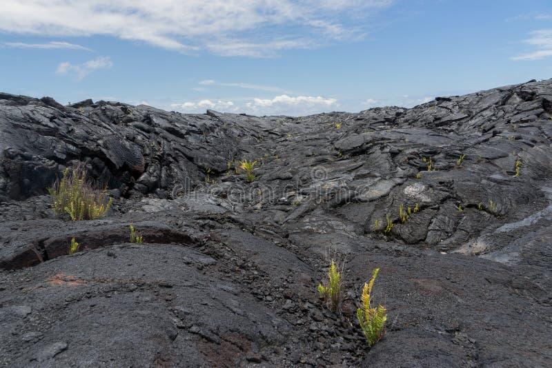 在夏威夷的大岛的熔岩荒野 免版税库存照片