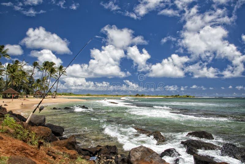 在夏威夷Poipu海滩风景的结尾杆 库存图片