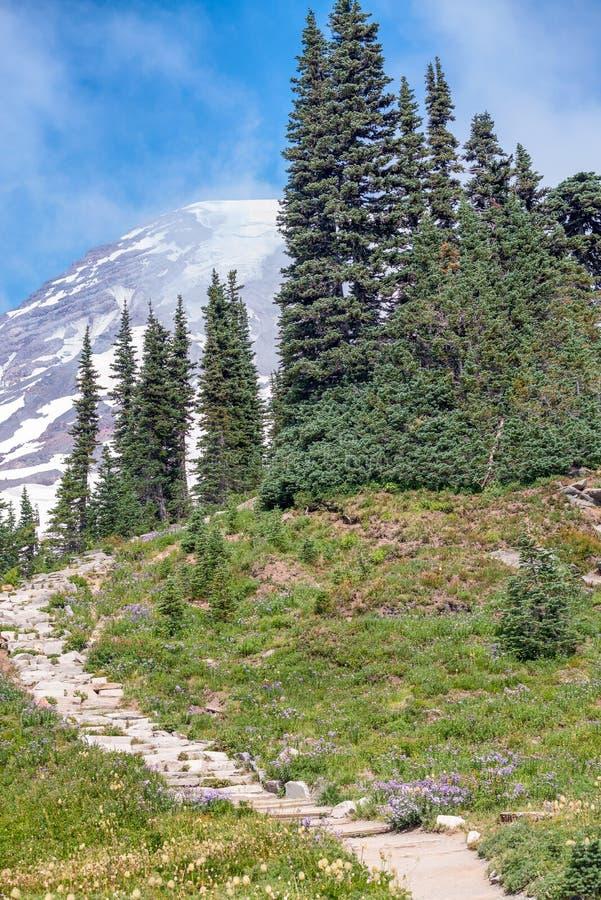在夏季的美丽的山行迹 图库摄影