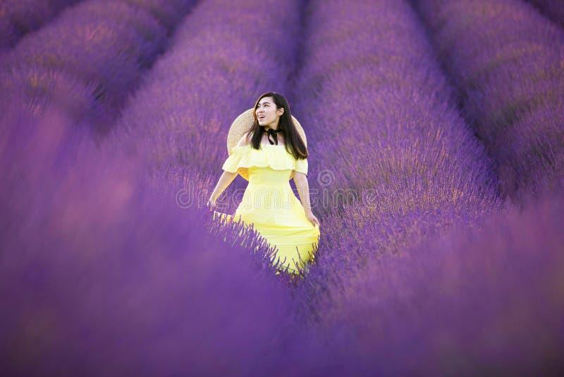 在夏时,yelllow礼服的亚裔妇女将喜欢走入淡紫色种植园领域 库存照片