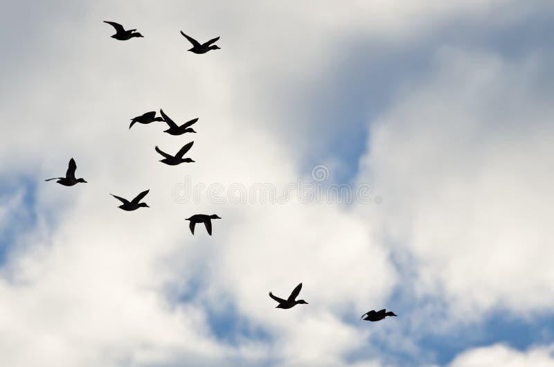 在多云天空现出轮廓的鸭子群,他们飞行 库存照片