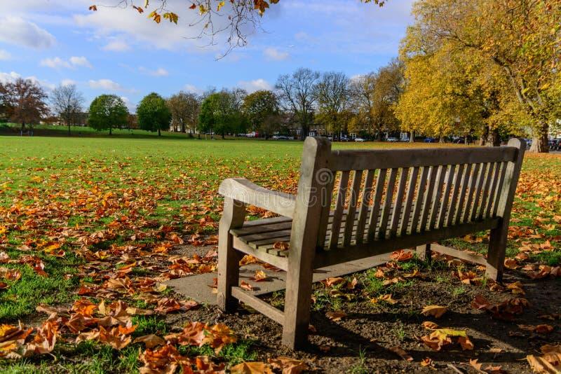 在多小山领域的空的长木凳在秋天的Brockley伦敦与叶子 免版税图库摄影