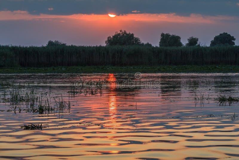 在多瑙河三角洲的日落 免版税库存图片