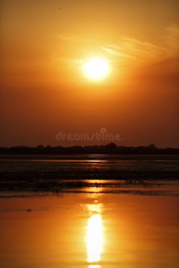 在多瑙河三角洲的美好的日落 库存照片