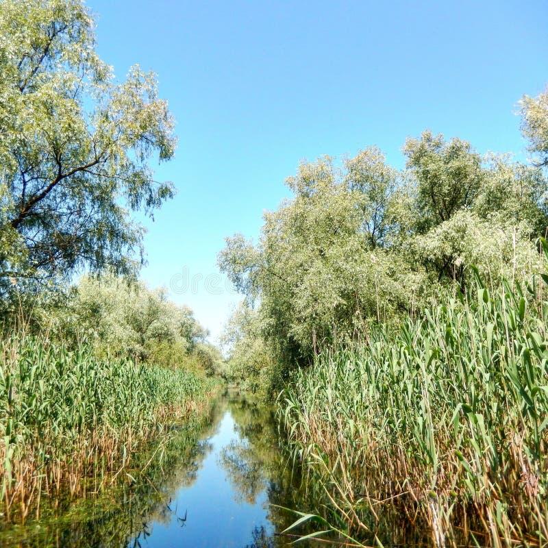 在多瑙河三角洲的水道路 库存照片