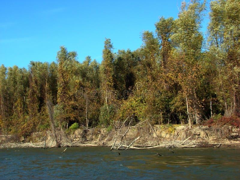 在多瑙河的秋天故事km的368 2 免版税库存图片
