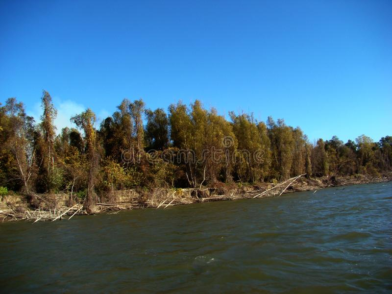 在多瑙河5的秋天故事 免版税库存图片