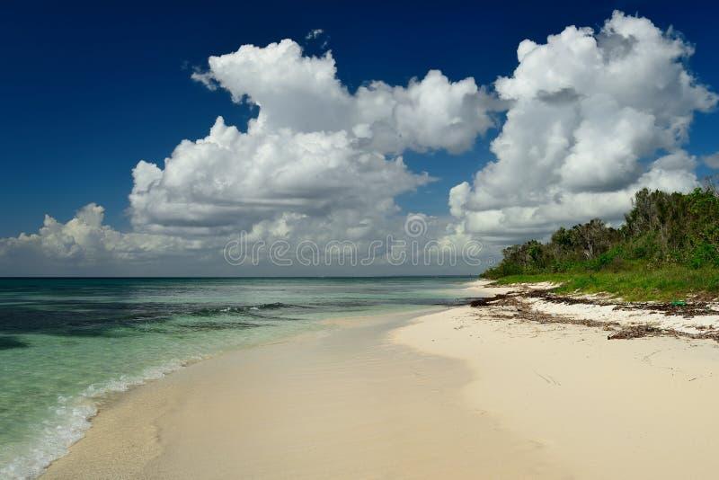 在多米尼加共和国的海滩在Bayahibe附近 库存图片