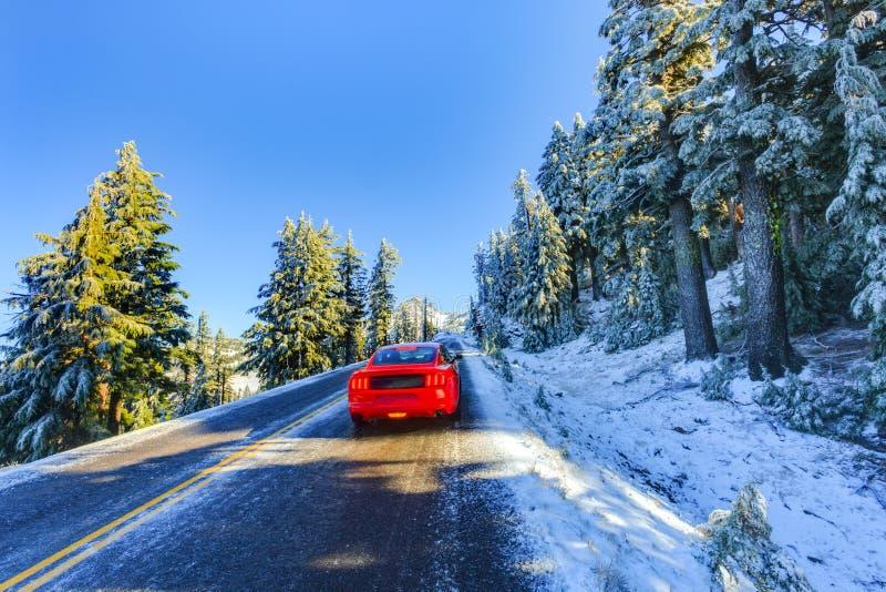 在多雪和冰冷的冬天路的红色汽车 免版税库存照片