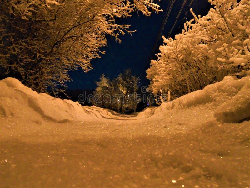 在多雪的小街道上的冬天晚上有道路的 免版税库存照片