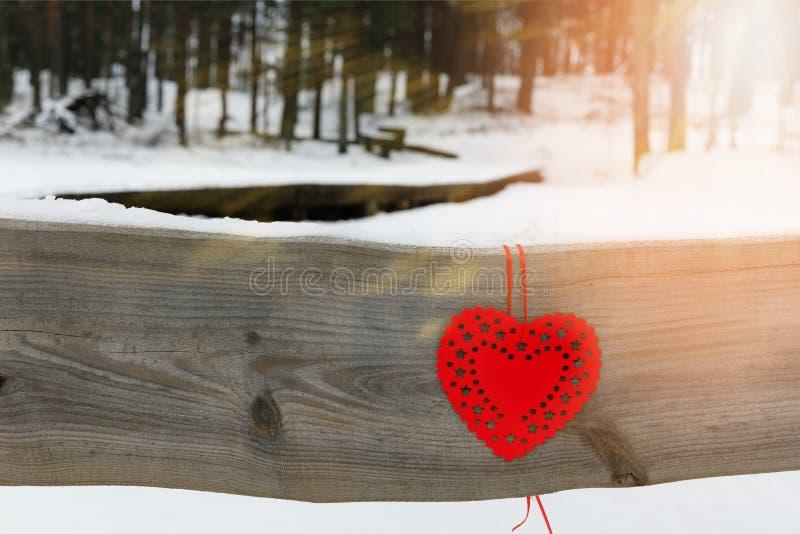 在多雪的树枝的红色心脏在冬天 假日愉快的情人节庆祝心脏爱概念 免版税库存照片