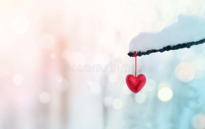 在多雪的树枝的红色心脏在冬天 假日愉快valent 免版税库存照片
