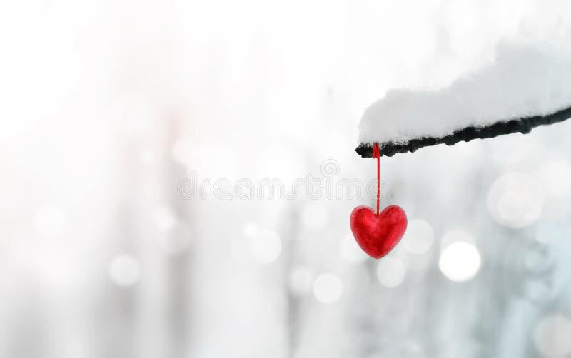 在多雪的树枝的红色心脏在冬天 假日愉快valent 免版税图库摄影