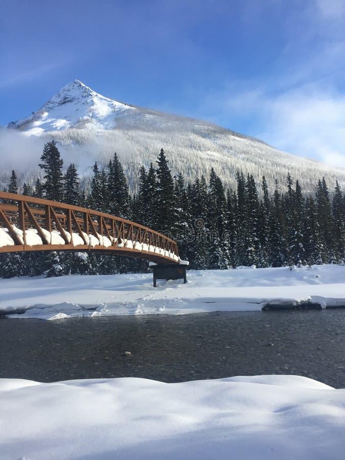 在多雪的河的桥梁 库存照片