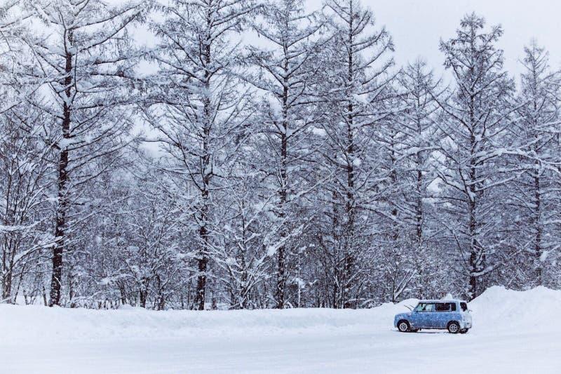 在多雪的街道上的一点汽车 库存图片