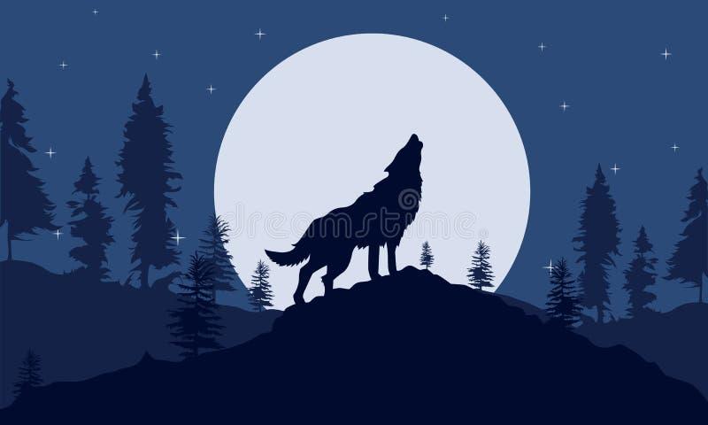 在夜森林剪影的背景狼 图库摄影