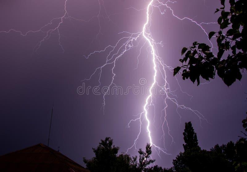 在夜空的巨大的闪电与树剪影 库存照片