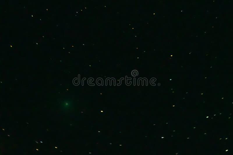在夜空的彗星46P/Wirtanen 免版税图库摄影