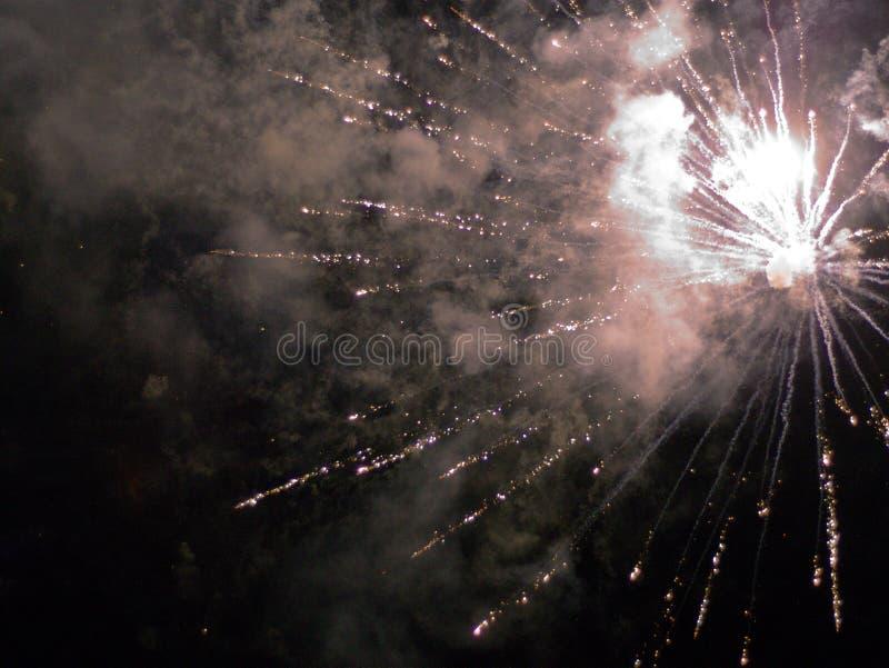 在夜空的烟花 免版税库存照片
