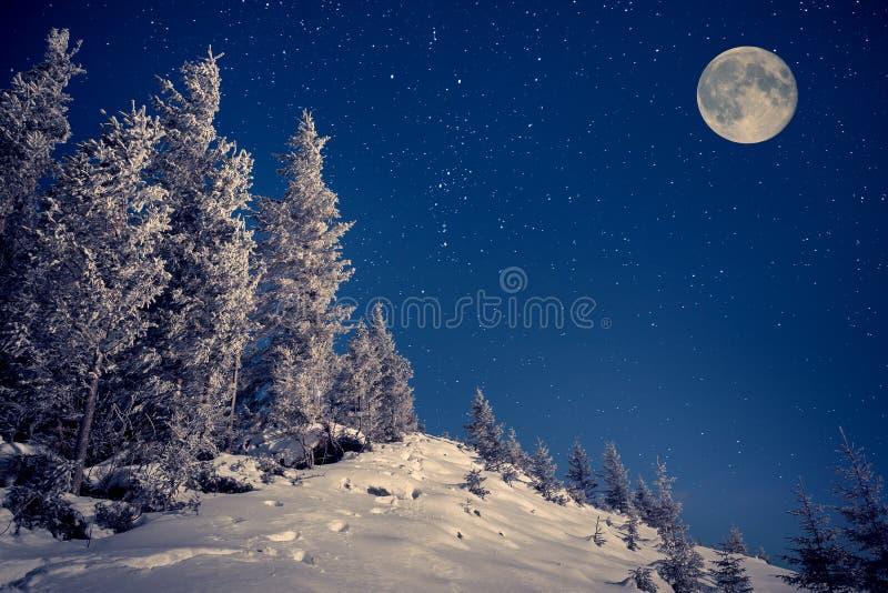 在夜空的满月在冬天山 免版税库存图片