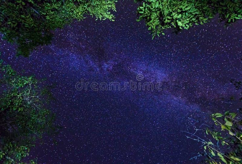 在夜满天星斗的天空的银河星系 免版税库存照片