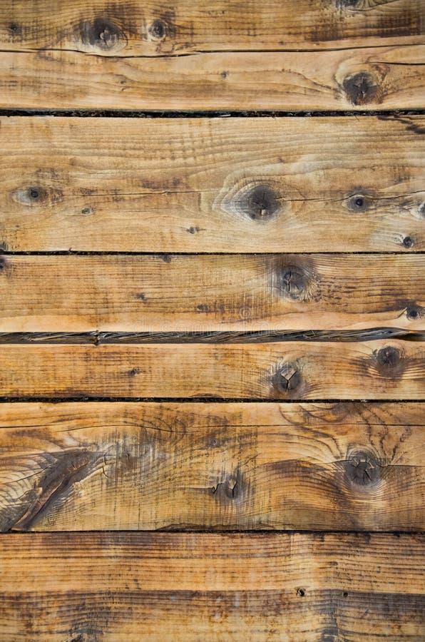 在大厦的木墙壁 干燥和计划的树 免版税库存图片