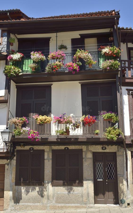 在大厦的花盆在吉马朗伊什 免版税图库摄影
