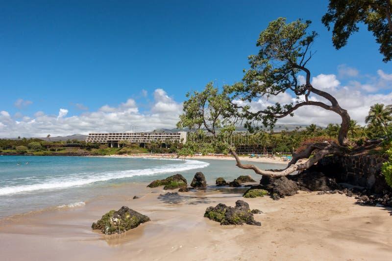 在大岛的美丽的毛纳基山海滩 库存照片