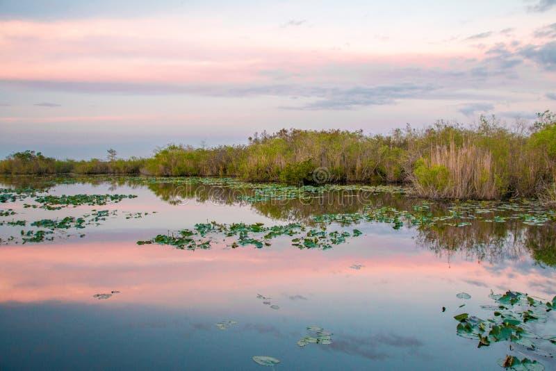 在大沼泽地国家公园的日落 免版税库存图片