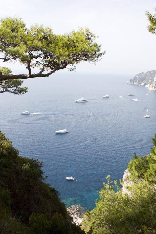 在大海的在s小山的游艇和树在卡普里意大利 免版税库存照片