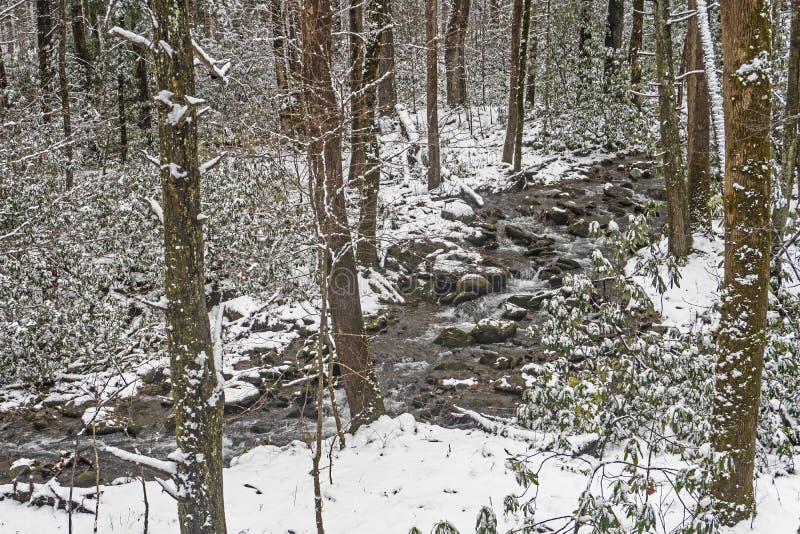 在大烟山雪盖一条小小河 库存图片